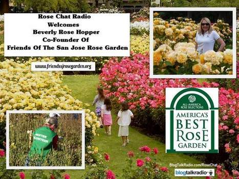 Great Guest This Week On Rose Chat Radio | Annie Haven | Haven Brand | Scoop.it