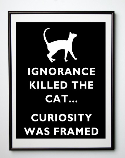 Hey Leaders: Curiosity Did Not Kill The Cat | Leadership Online | Scoop.it