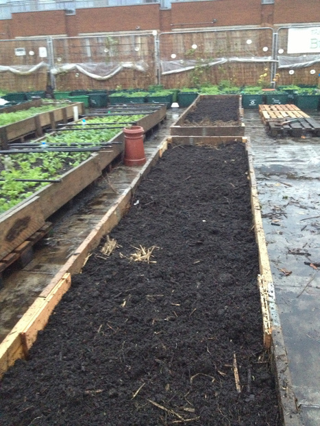 Step by Step - Make your own Permaculture No Dig raised bed | Transición | Scoop.it