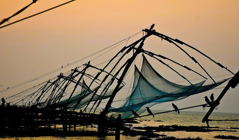 The Aquaculturists: 21/01/2016: Study: Global fish catches much higher than previously thought   Global Aquaculture News & Events   Scoop.it