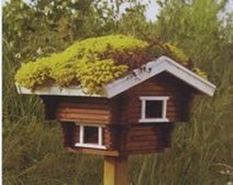 Green roof on Dove Cote | Eco-friendly roofs:  green, white, and garden | Scoop.it