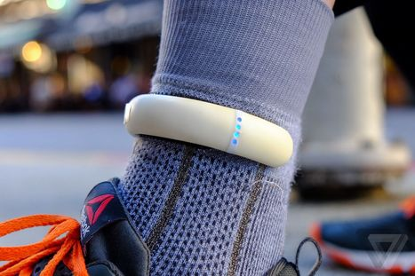 The smartest socks ever: hacking my running with Sensoria's fitness tracker - The Verge | Canyon Chiropractic Clinic | Scoop.it