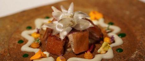 Top Downtown Restaurants in Toronto | Abbey's Kitchen | Abbey's Kitchen Inc. | Scoop.it