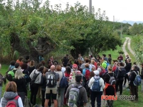 Turismo e agricoltura: il successo della val Bidente- Forlì | I Territori parlanti | Scoop.it