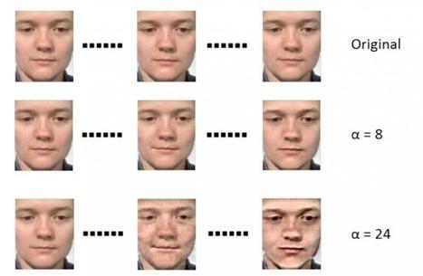 Machine Vision Algorithm Learns to Recognize Hidden Facial Expressions | MIT Technology #innovation | Digital #MediaArt(s) Numérique(s) | Scoop.it