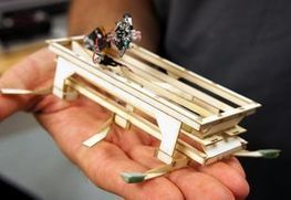 Bio-Robotics: Biology Goes High-Tech   Robots and Robotics   Scoop.it