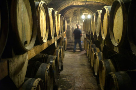 Why France matters when it comes to wine | Vitabella Wine Daily Gossip | Scoop.it