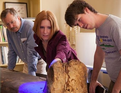 Egyptologist sheds light on Tulane mummies | The Archaeology News Network | Kiosque du monde : Afrique | Scoop.it