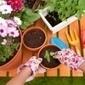 Jardiner écolo : les bonnes pratiques | Bio, écologie et commerce équitable | Scoop.it