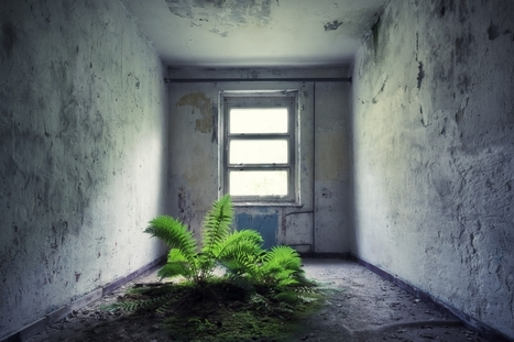Vacancy: documenting the emptiness of abandoned houses and military bases | D_sign | Scoop.it