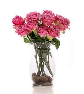 12stems pink roses bouquet deliver to your Daughter on Graduation Day – Pink_Roses_Bouquet#004 | Collection of flowers | Scoop.it
