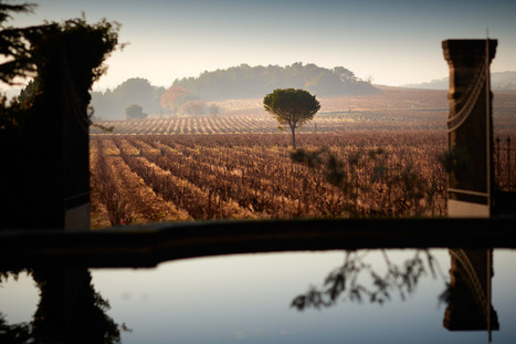 When 13 is a lucky number: Chateau de Beaucastel | Vitabella Wine Daily Gossip | Scoop.it