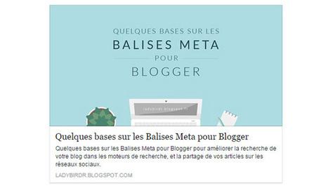 Optimiser ses articles pour les réseaux sociaux: Lady bird red | François MAGNAN  Formateur Consultant | Scoop.it