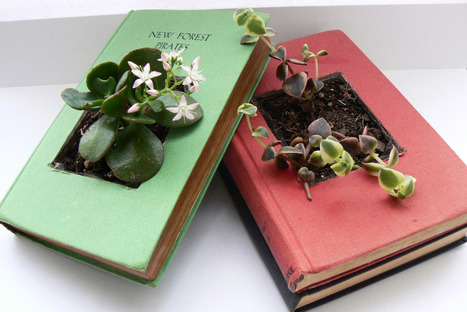 Upcycle vintage books with succulents | Vintage Living Today For A Future Tomorrow | Scoop.it