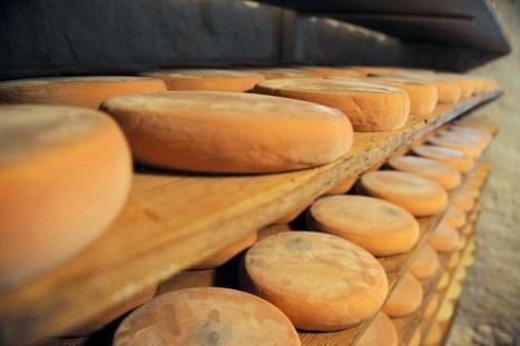 On peut faire de l'électricité avec du fromage | thevoiceofcheese | Scoop.it