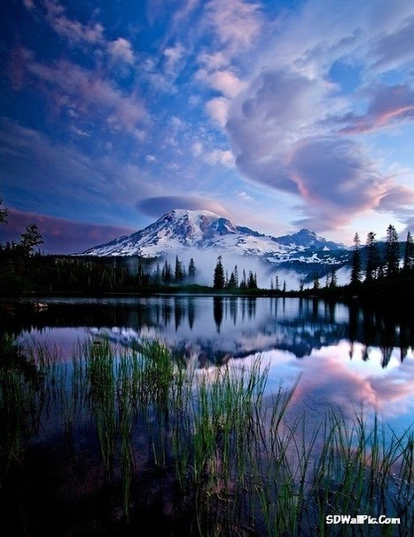 Heaven on earth - Rainier National Park US | Funny Pic And Wallpapers | Scoop.it