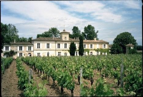 Sorties primeurs 2012 : toutes les appellations | Le vin quotidien | Scoop.it