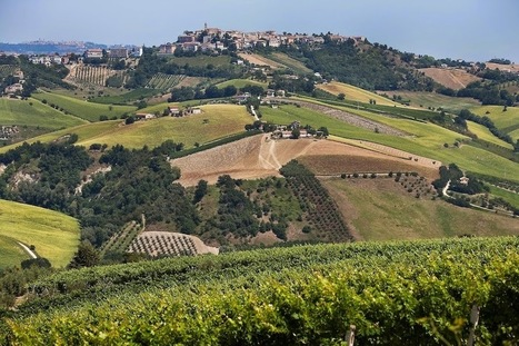 Properties in Le Marche: the area and some offers in San Ginesio | Le Marche Properties and Accommodation | Scoop.it
