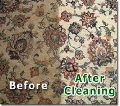 Wow Auckland Carpet Cleaning | Carpet Cleaning Auckland | Scoop.it