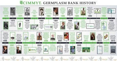 CIMMYT genebank history in one jpg | Agricultural Biodiversity | Scoop.it
