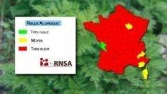 Alerte rouge aux graminés, en Rhône-Alpes et dans toute la France - France 3 Rhône-Alpes | Bien-être | Scoop.it