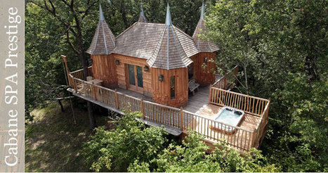 Château spa de prestige dans les arbres !   Hébergements insolites   Scoop.it
