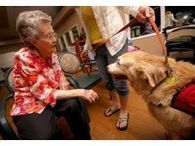 Senior canine still making people smile - Shelby Star | The DIY Veterinarian | Scoop.it