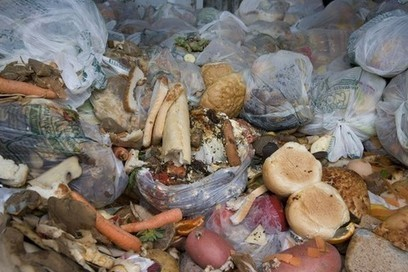 Shelf-life extension would reduce food waste - FoodManufacture.co.uk | Modified Atmosphere Packaging | Scoop.it