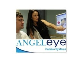 AR Science & Technology Authority Awards $50,000 to Angel Eye Company | New York Health And Medical Centers for Business Listings | Scoop.it