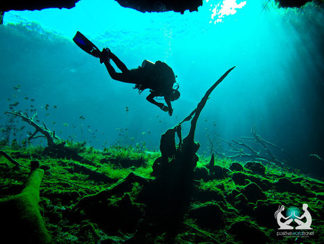 Cave Diving in Tulum, Mexico | travellers | Scoop.it