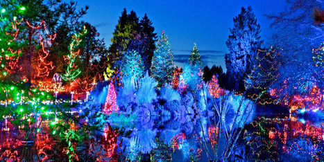 Things To Do In Vancouver: Christmas Lights (PHOTOS) - Huffington Post Canada | I love boating | Scoop.it