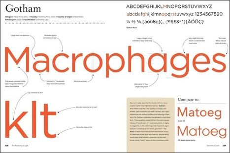 The Perfect Book For the Person Who Noticed This Promo Headline Is In Verdana | Document Design in PWP | Scoop.it