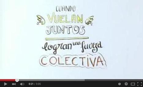 Inteligencia Colectiva para Todos | Video | Universidad 3.0 | Scoop.it