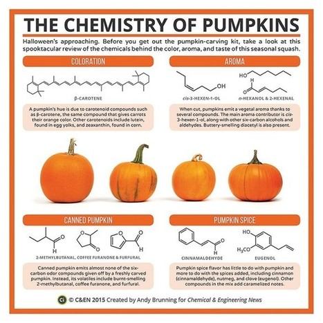 Periodic Graphics: The Chemistry Of Pumpkins | October 12, 2015 Issue - Vol. 93 Issue 40 | Chemical & Engineering News | STEM Connections | Scoop.it
