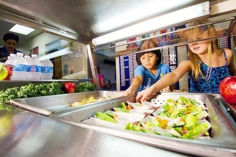 Vegetarian School Lunch Program Pays Off | Healthy Recipes and Tips for Healthy Living | Scoop.it
