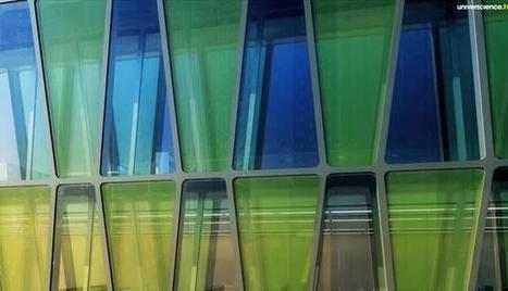 Des algues dans nos villes | Valorisation des algues | Scoop.it