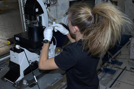 Twitter / AstroKarenN: Brand new microscope assembled ... | Keeping taps on the Alzheimer's Desease | Scoop.it