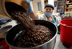 Mexico coffee co-op, with border operations, helping ease immigration pressures - Arizona Daily Star | Coffee Lovers | Scoop.it