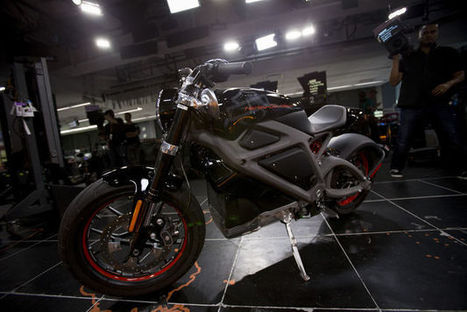 Harley Aims Electric Hog at Selfie-Taking Green Hipsters | Manufacturing In the USA Today | Scoop.it