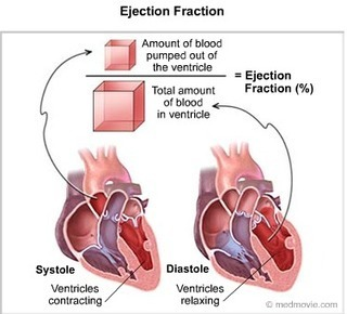 Do You Know Your Heart's Ejection Fraction? | Heart diseases and Heart Conditions | Scoop.it