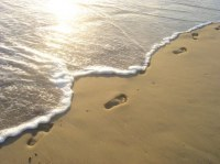 Leaders…What Is Your Family Footprint | Serving and Leadership | Scoop.it