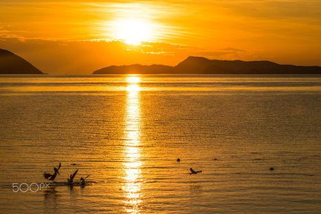 """Baja California Sunset"" by Michnus Olivier on 500px | Baja California | Scoop.it"