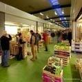 Marchés d'Angers, quartier Monplaisir - Voyage Tourisme, rendez-vous en France, en Europe, vacance et agenda culture, visite, concert, festival, loisirs, sortie, bons plans hotel, guide restaurant | Vins de Loire | Scoop.it