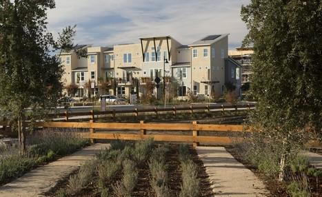 Farming the Subdivision | Community: Building, revitalizing, engaging | Scoop.it