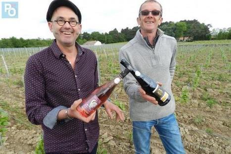 Le berligou, cépage des ducs de Bretagne, maintenant commercialisé   Le vin quotidien   Scoop.it
