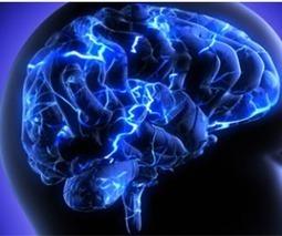 Neurociencias y educación | Descubre Fundación UNAM | Neurociencias y la educación | Scoop.it
