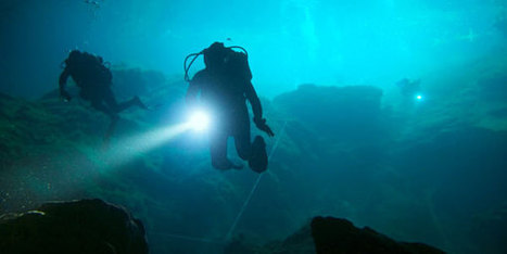 No Such Thing As Old Bold Divers   All about water, the oceans, environmental issues   Scoop.it