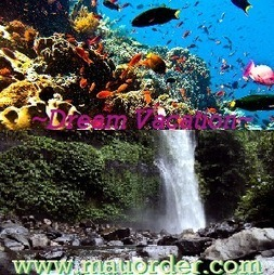 Dreaming Vacation : Bali -> Lombok -> Bunaken -> Wakatobi | MauOrder.Com | Indonesia Today | Scoop.it