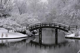 No bridges like snow bridges | Dirt Du Jour | Annie Haven | Haven Brand | Scoop.it