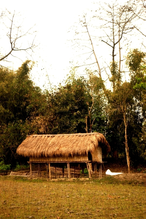 'Northeast India should go for traditional housing' | Green Calling | Scoop.it